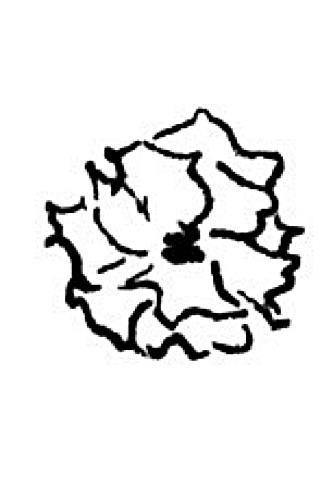 Bartholdi Brooch Drawing