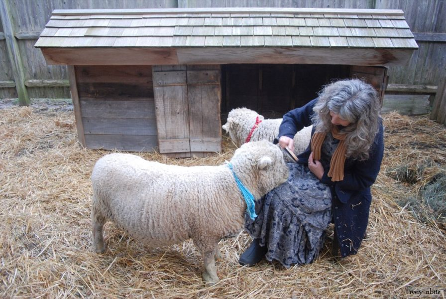 Cindy, owner of Saturday Farm, makes every part of her life as authentic as her Baa Boys. In her search for authentic clothing, she learned about Ivey Abitz garments through a friend's recommendation.